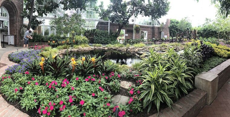 Phipps to reopen as seen on PTL