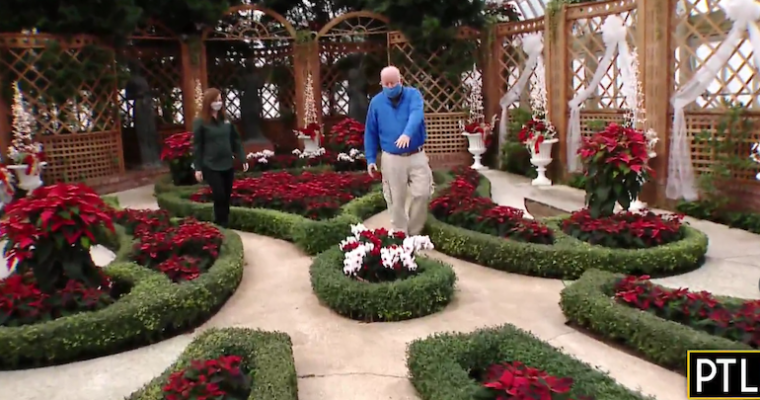 A tour of the Winter Flower Show at Phipps as seen on PTL