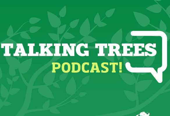 Talking Trees New Podcast alert: Weather Whiplash