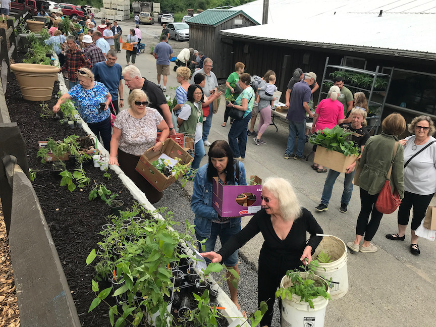 18th Annual Doug Oster Plant Swap and Gardening Hullabaloo 5/23/21 at Soergels 11am