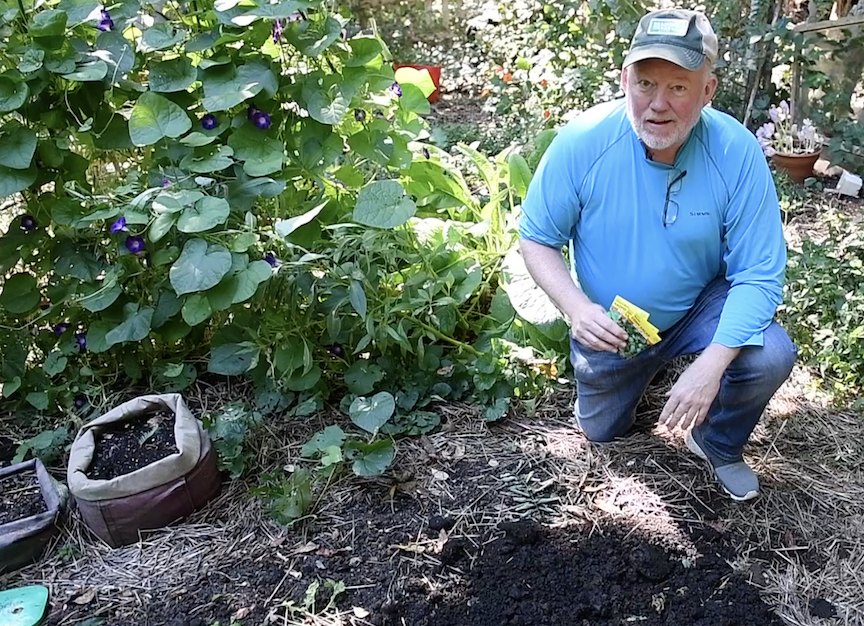 Planting cool weather crops and perennials as seen on PTL